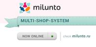 Custom Multi-Shop-System online